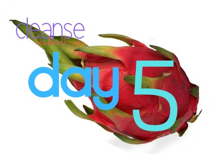 cleanse blog icon day 5