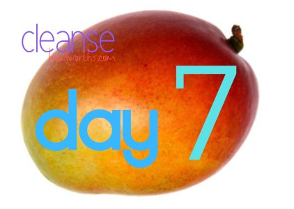 cleanse blog icon day 7