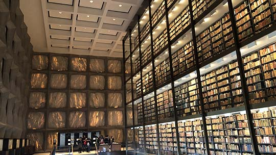 The library at Yale University