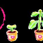 Website Logo HAPL vector file