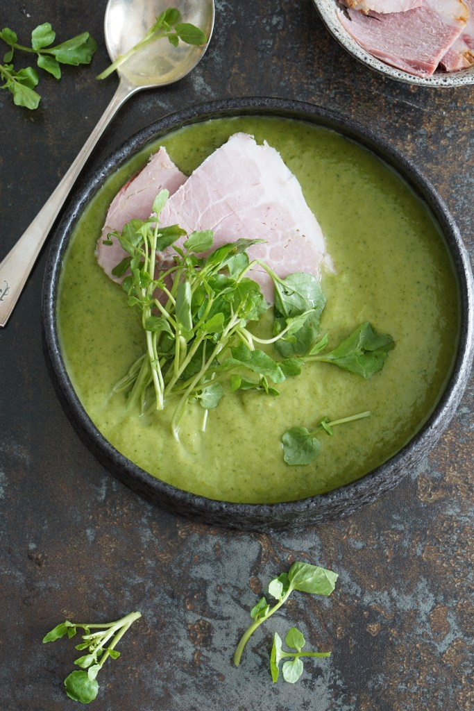 green soup and ham [AIP]
