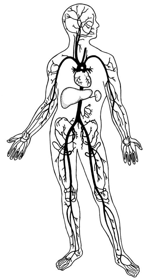 black body diagram