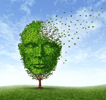 Antihistamines treat schizophrenia