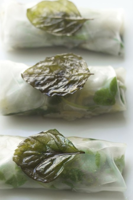 rice summer rolls with fried basil on white background