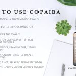 How To Use Copaiba Essential Oil Healing In Our Homes Healing In Our Homes