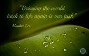 bringing the world to life