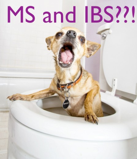 multiple-sclerosis-and-IBS
