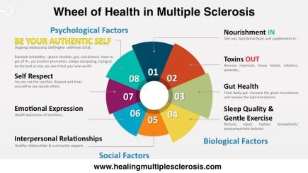 wheel-of-health-multiple-sclerosis