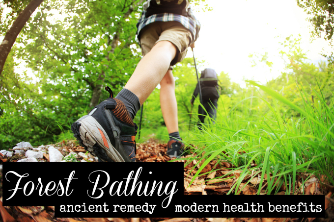 Holistic Practice of Forest Bathing Has Surprising Benefits