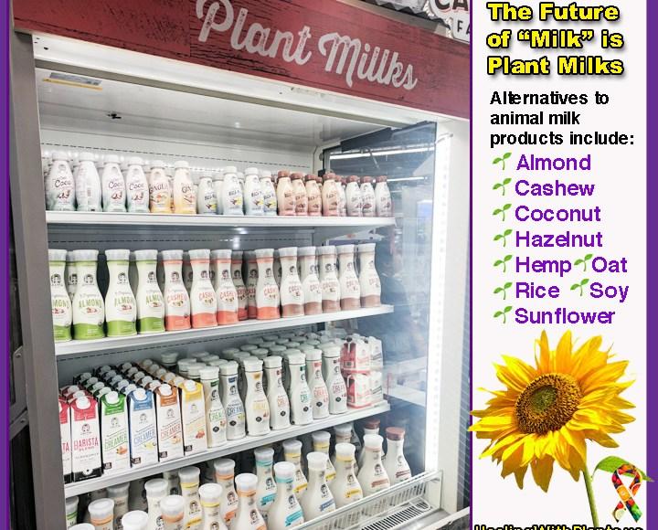 """The """"Milk is Essential for Calcium"""" Myth"""
