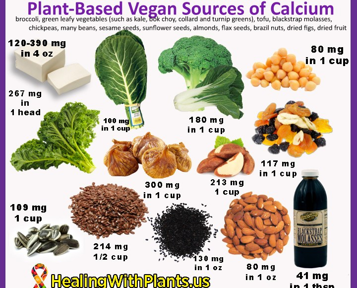 Plant-Based Sources of Calcium