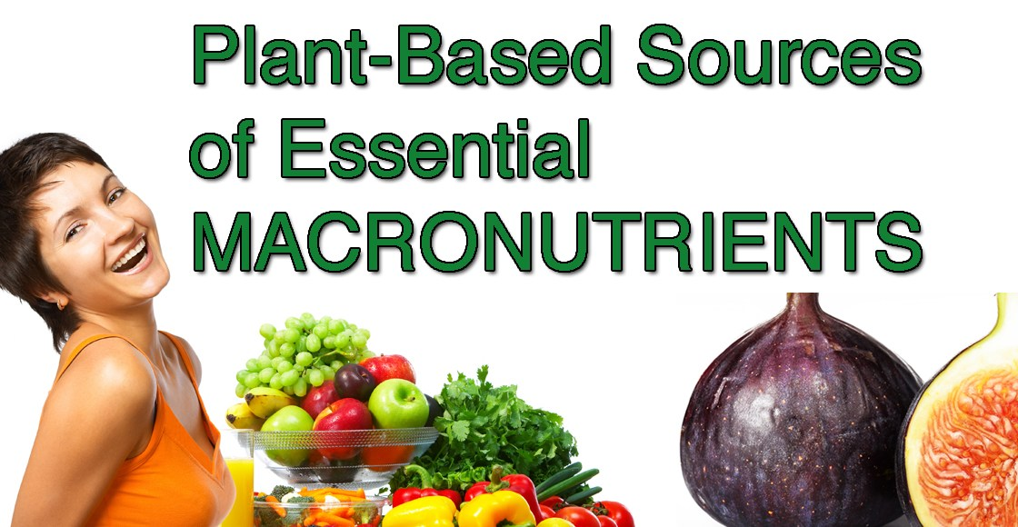 Plant-Based Sources of Essential MacroNutrients