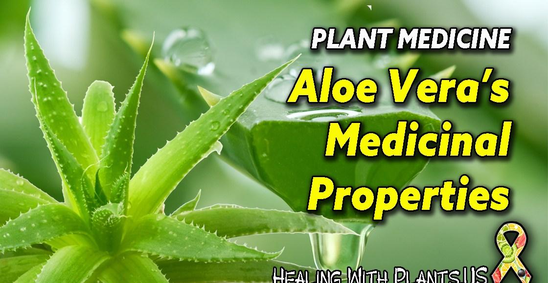 Aloe Vera Medicinal Benefits