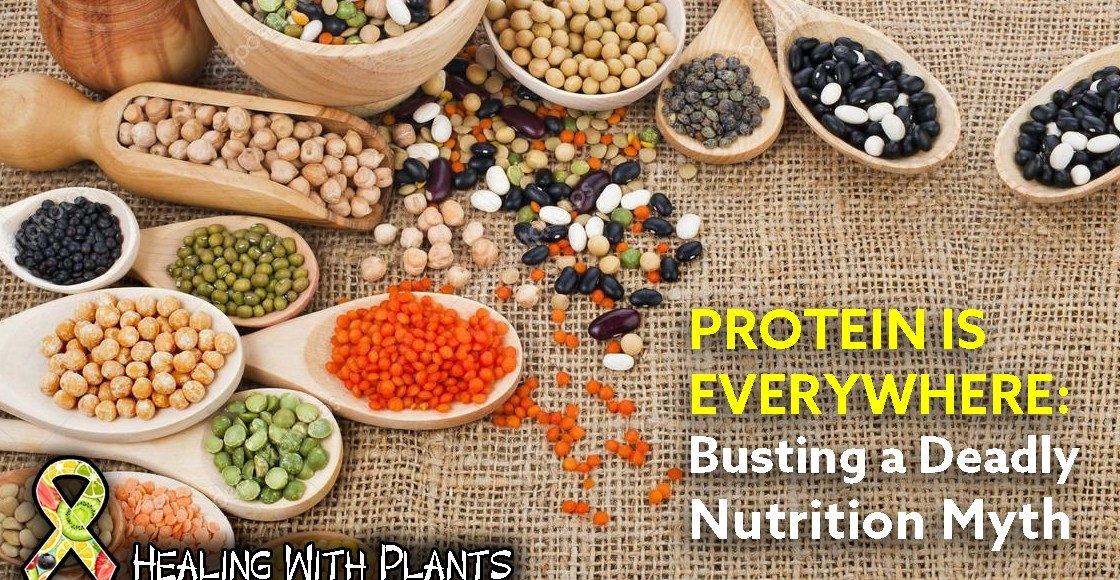 Protein Is Everywhere: Busting A Deadly Nutrition Myth