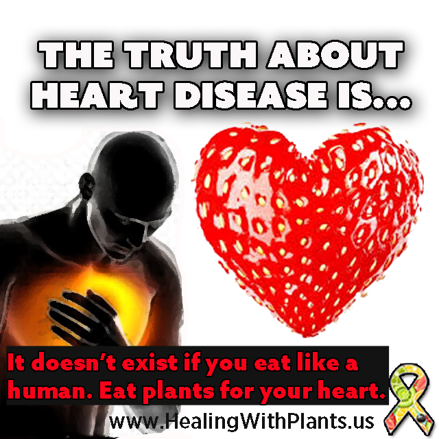 Healing heart disease with diet is possible!