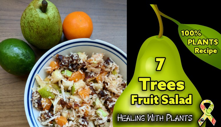 RECIPE: Seven Trees Fruit Salad