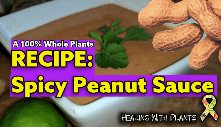 RECIPE: Spicy Peanut Sauce