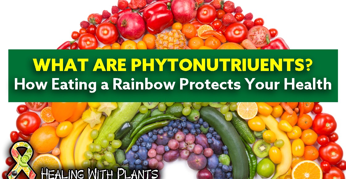 How Eating a Rainbow Protects Your Health