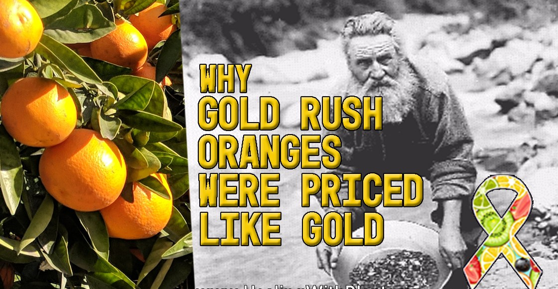 Why Gold Rush Oranges Were Priced Like Gold