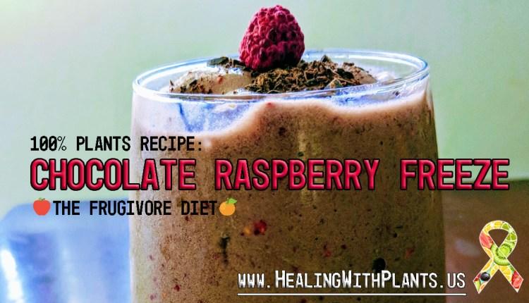 RECIPE: Chocolate Raspberry Freeze