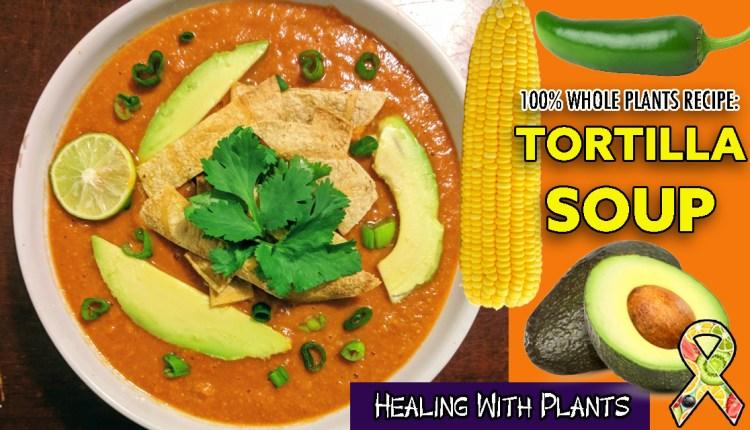 Tortilla Soup Recipe (Vegan, WFPB)