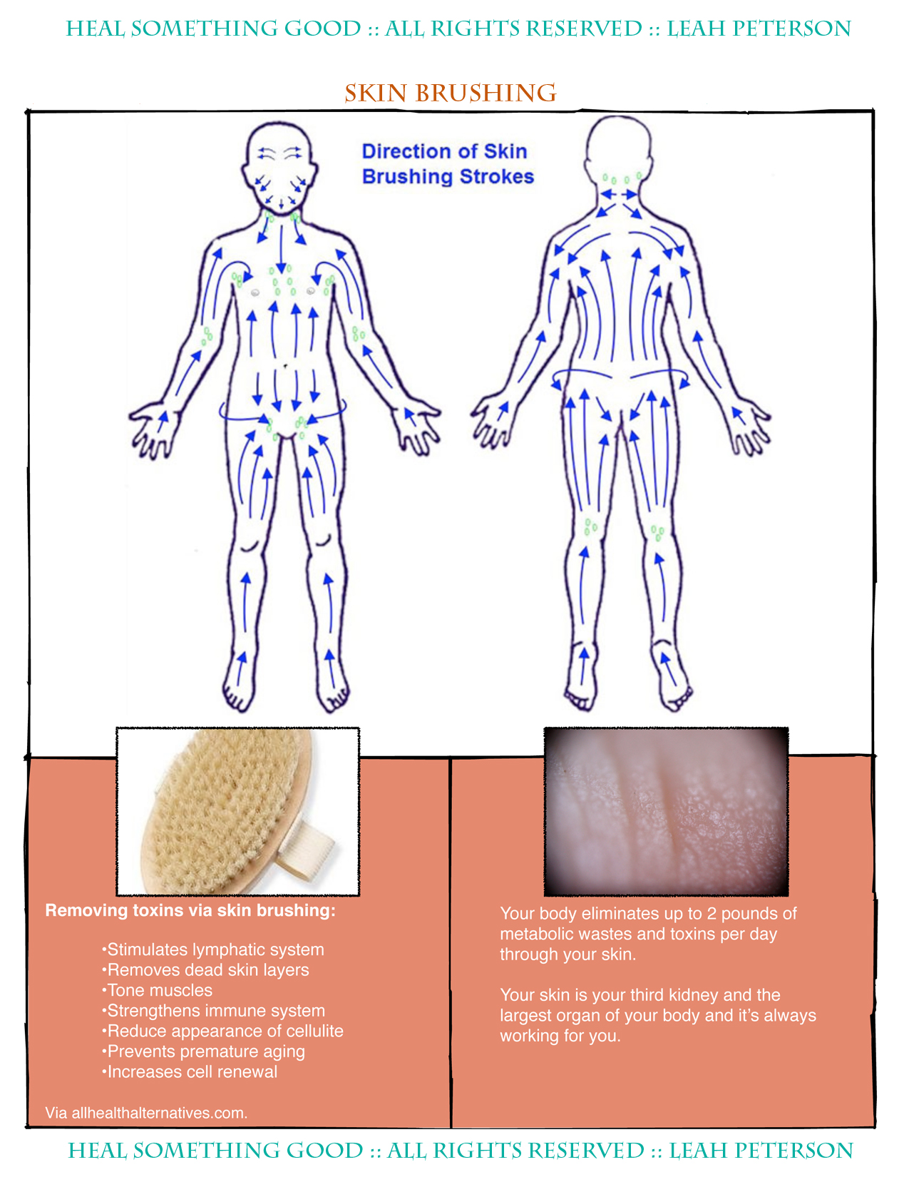 Chart Skin Brushing Technique Heal Something Good