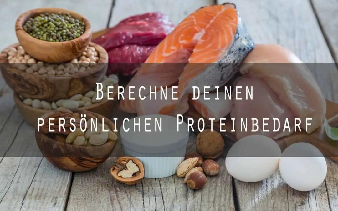 Proteinbedarf