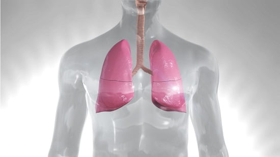 Newly discovered bacterial defence mechanism in the lungs - healthinnovations