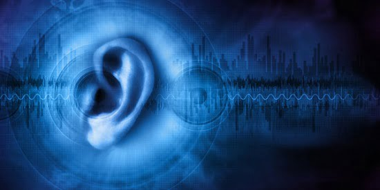 Can you see what I hear Blind human echolocators use visual areas of the brain - neuroinnovations