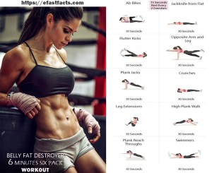 BELY FAT DESTROYER 6 MINUTES SIX PACK WORKOUT