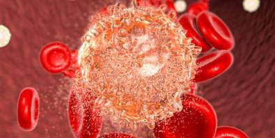 cancer-cells-hate-these-14-foods-time-to-start-eating-them