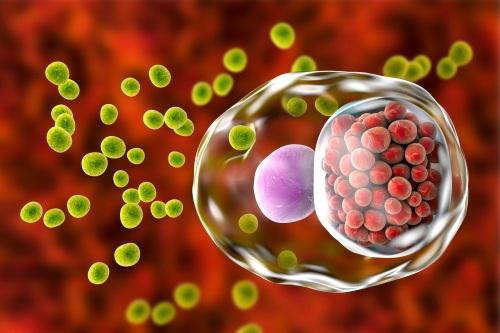 衣原體感染原因、病徵及測試 | ESDlife健康網購