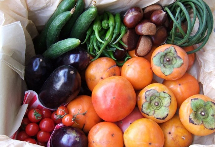 Use of fruits and vegetables can help in keeping the body healthy.