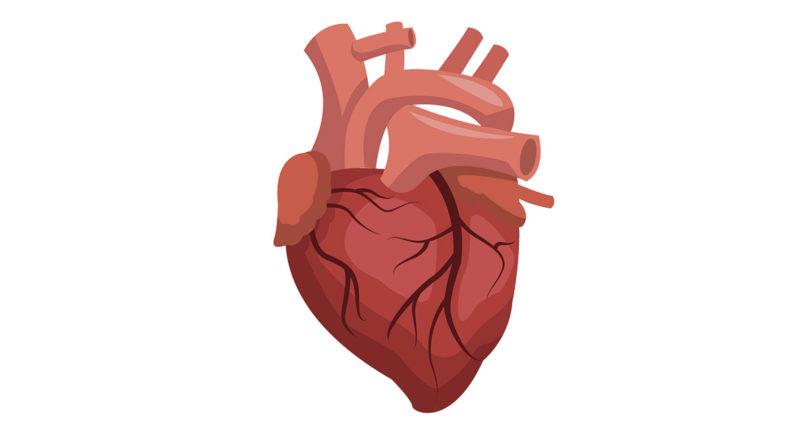 progress in treating heart