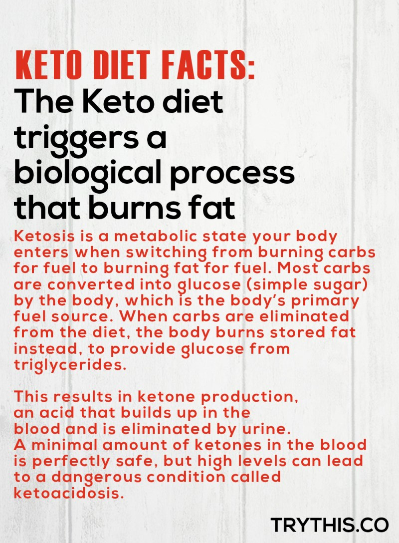 Ending The Cyclical Ketogenic Diet - Is It Necessary?