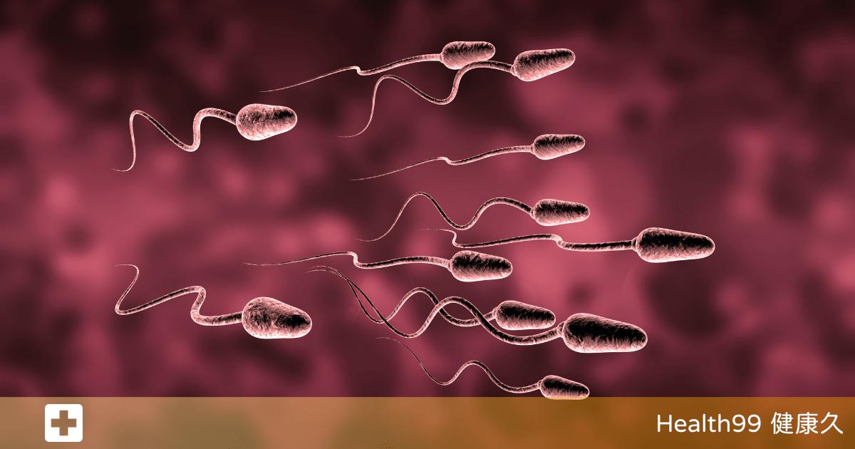 You are currently viewing 精子數少!誘發男性「少精症」的因素有哪些?要如何改善和調理?