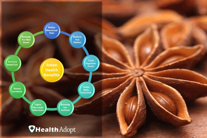 Anise Health Benefits