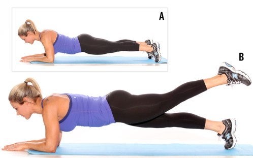 Image result for Plank With Leg Lift