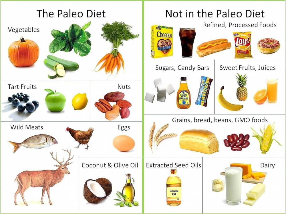 paleo diet for weight loss yay or nay