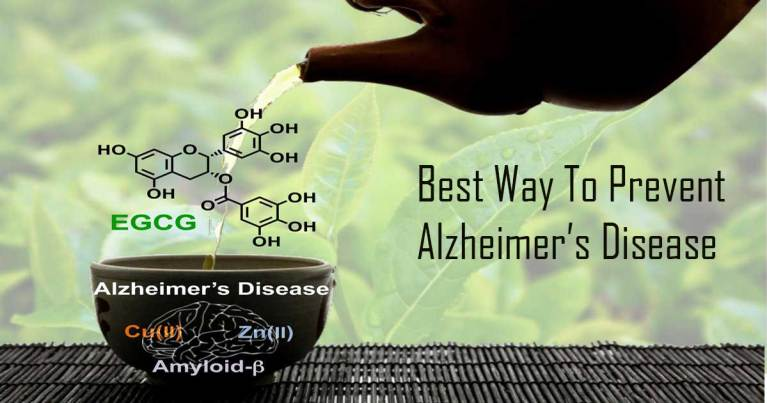 Scientists Claim: This Is Definitely the Best Way to Prevent Alzheimer's Disease
