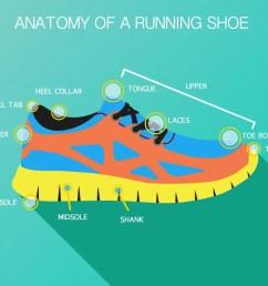 diagram of running shoe [ 1200 x 800 Pixel ]