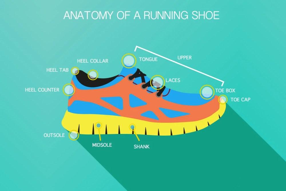 medium resolution of diagram of running shoe