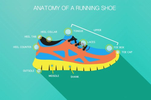 small resolution of diagram of running shoe