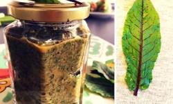 Blutampfer Pesto mit Walnüssen hält im Kühlschrank 1 Woche healthandthecity.de