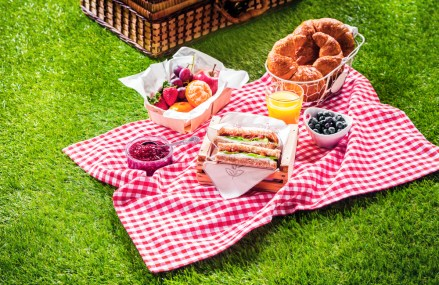 Food Safety When Eating Outdoors