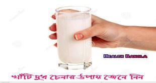 Real-Milk