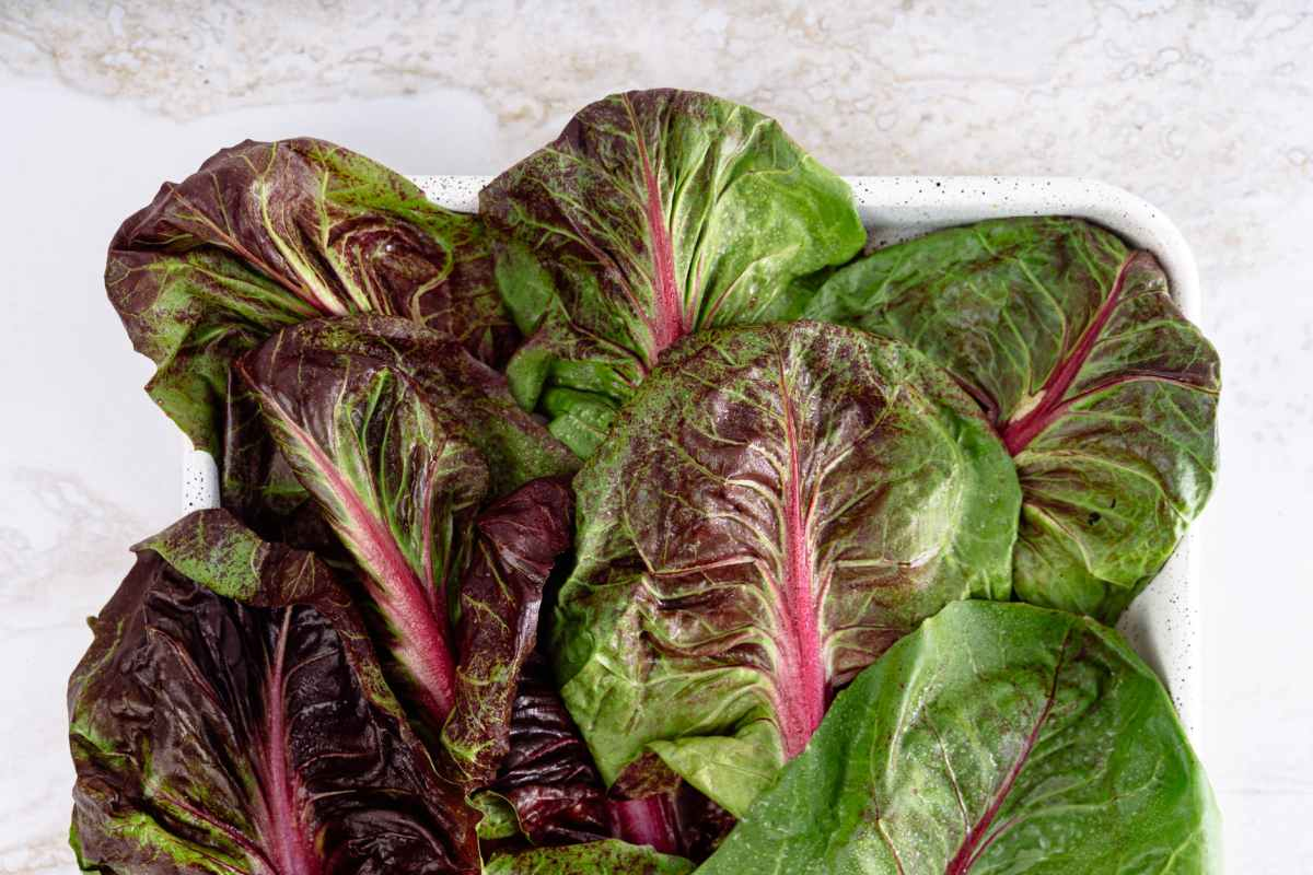 Health Benefits of beetroot leaves