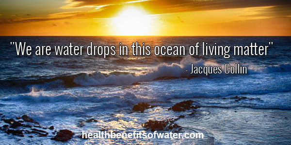 """ We are drops of water in this ocean of living matter"" - Jaques Colin Ocean in Sunset"