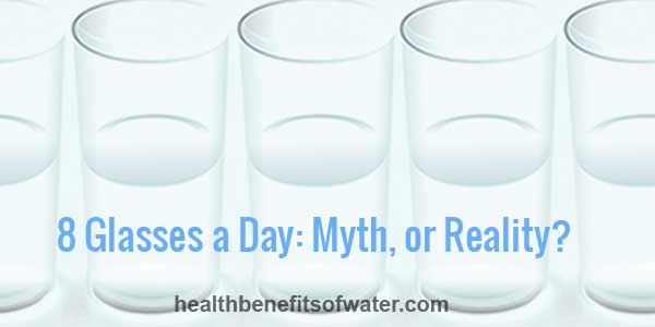 8 Glasses a Day: Myth or Reality?