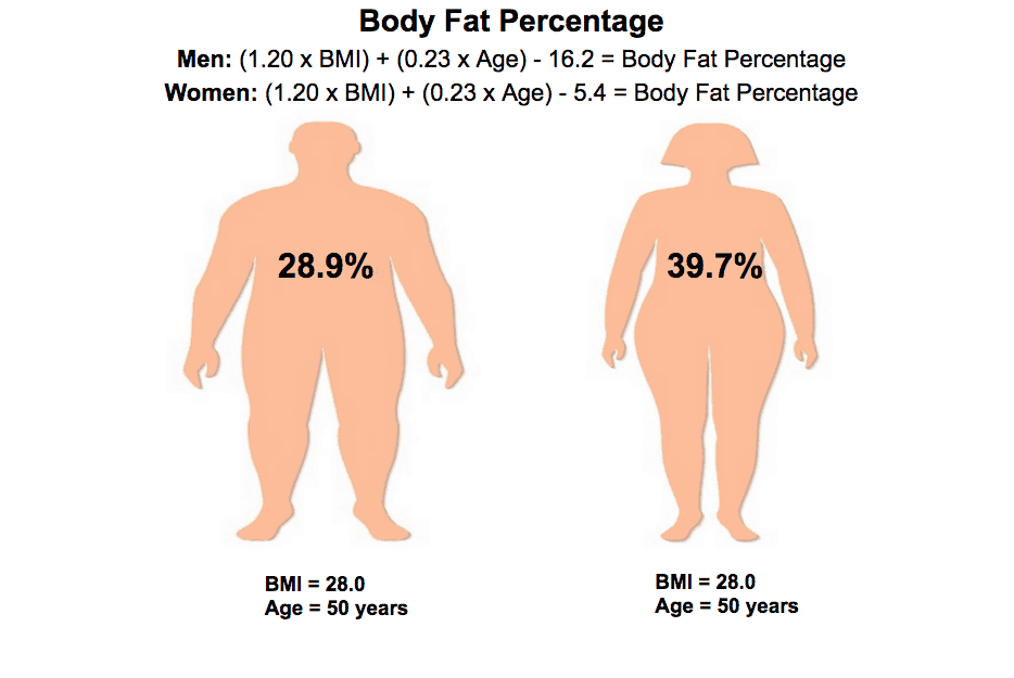 Body Fat Increases With Age Experiment